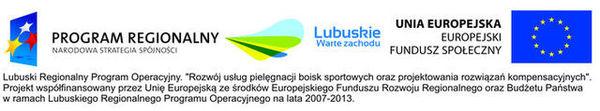 Rozwój usług pielęgnacji boisk sportowych oraz projektowania rozwiązań kompensacyjnych